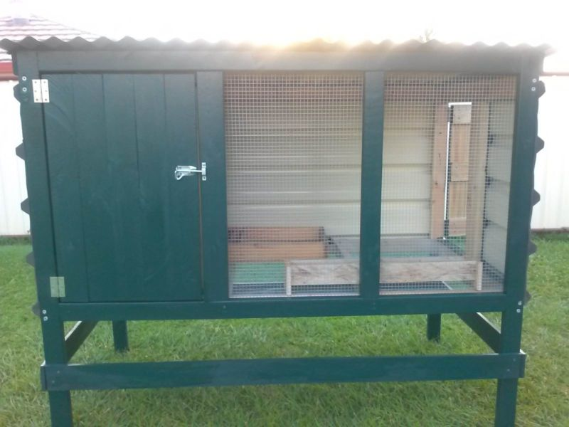 An Introduction to Chicken Coop Building