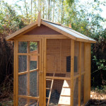 Choosing the Best Chicken House for Your Chickens